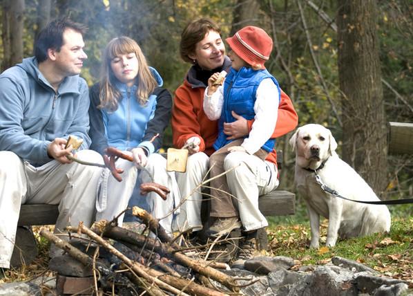 Hundetraining Familienhund Problemhund